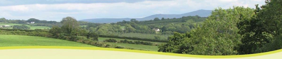 Dartmoor-Caravan-Camper-Van-Park-Campsite-Okehampton-Devon-Appledore-Park