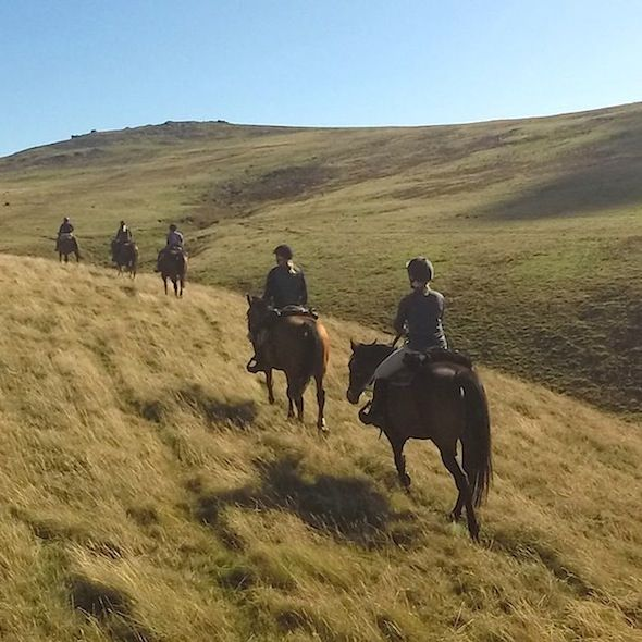 Horse-Riding-Pony-Trekking-Okehampton-Devon