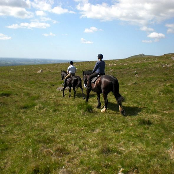 Horse-Riding-Dartmoor-Cholwell-Riding-Stables